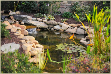 Shawnee mission ks landscaping backyard landscapes brick for Ornamental pond fish port allen
